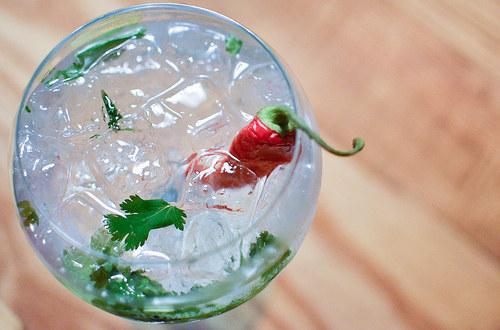 Gin tonic con chile