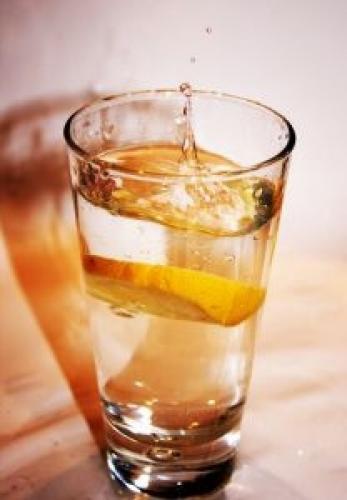 El gin tonic también marida