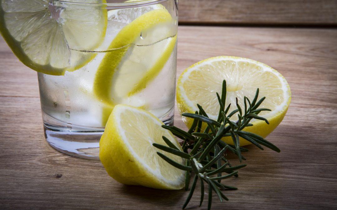 Gin tonic con romero