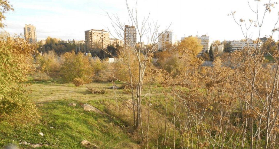 ¿Te gustaría vivir en el distrito más verde de Madrid?